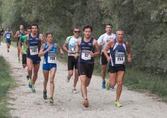 Alba - Corri Sotto le Torri 2016