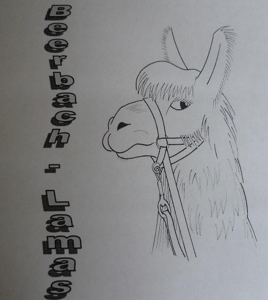 Logo Beerbach-Lamas